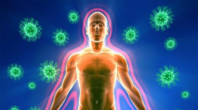 Лечебные свойства черноплодной рябины известны как иммуностимуляторы, но есть и противопоказания к ее использованию.