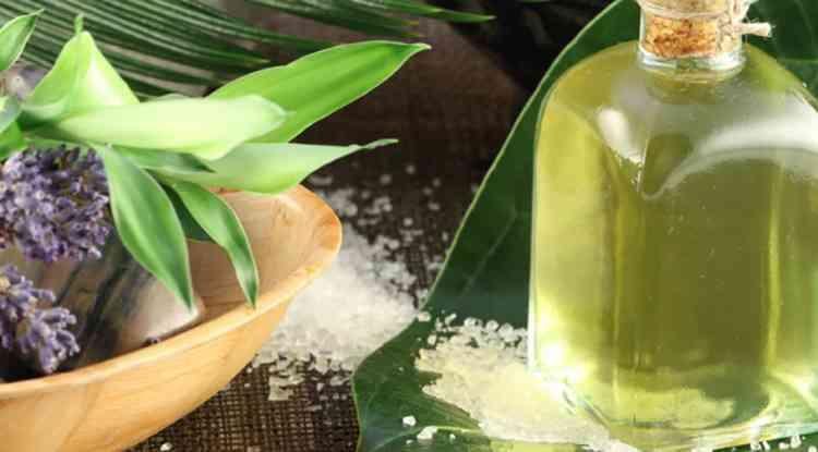 Эвкалипт польза эфирного масла