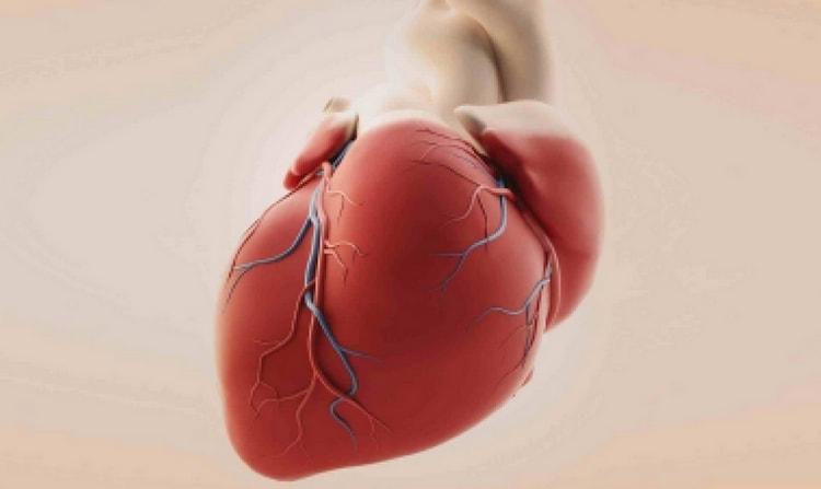 Заболевание чревато осложнениями, поэтому лечение стенокардии важно начать как можно раньше.