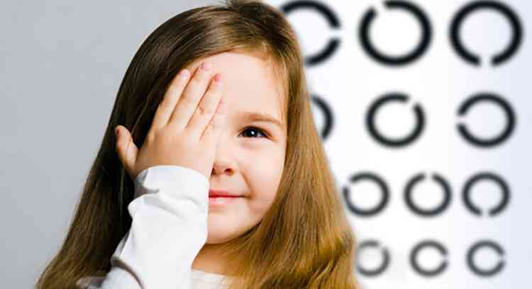 Патиссон поможет вам сохранить зрение