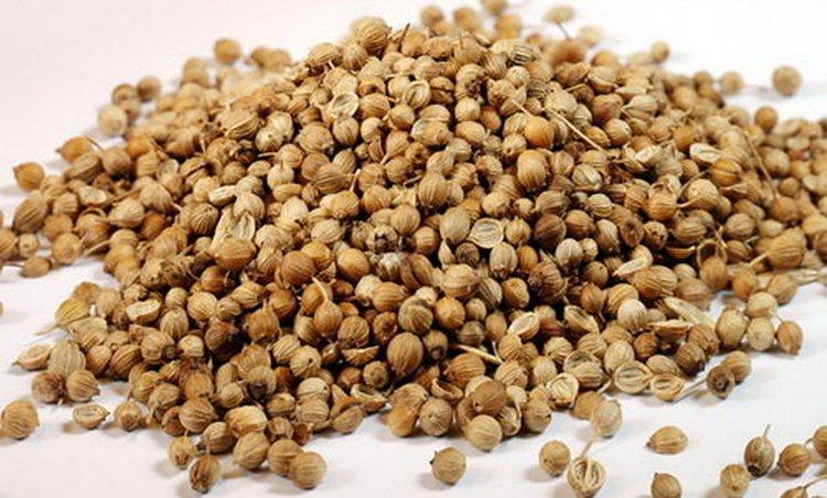 Узнайте также о полезных свойствах и противопоказаниях к использованию плодов кориандра.