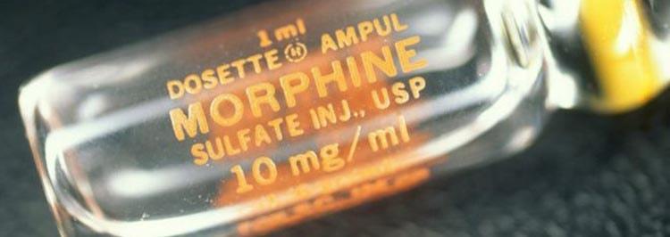 Морфин из мака поможет заглушить боль