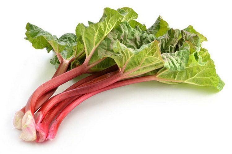 Какие растения могут быть полезны для здоровья.