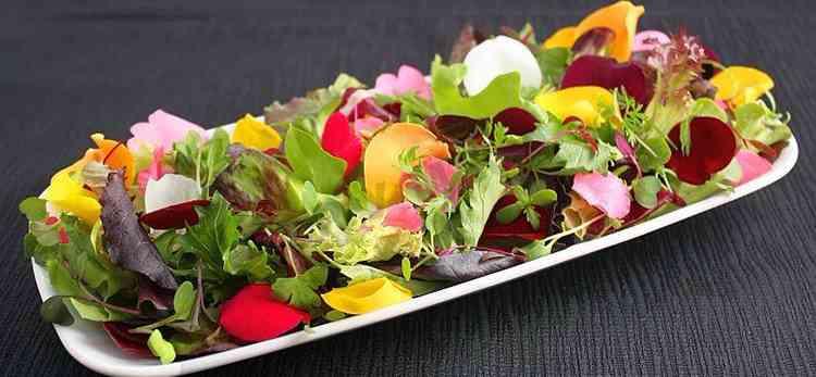 Первоцвет использование в салате