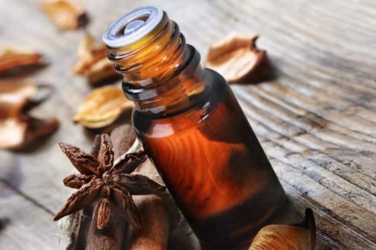 Польза, лечебные свойства и противопоказания к употреблению аниса обыкновенного