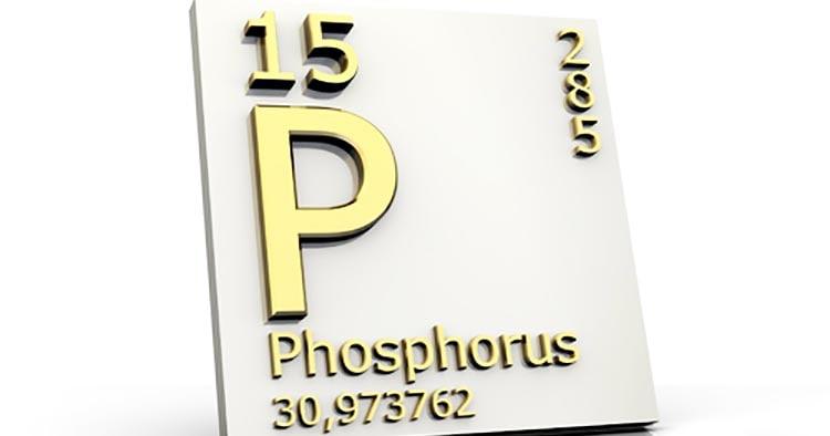 Полезное вещество - фосфор в момордике