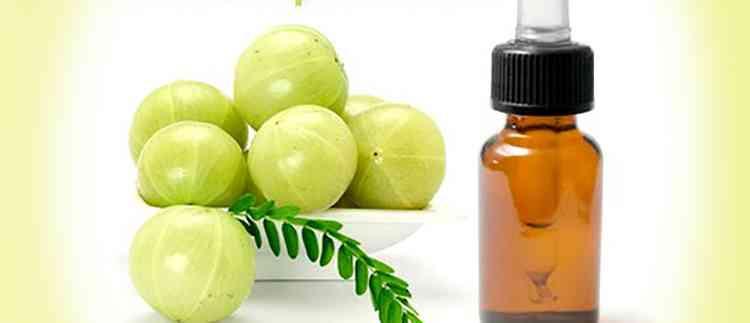 Амла польза масла растения