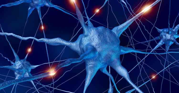Эспарцет поможет вашей нервной системе