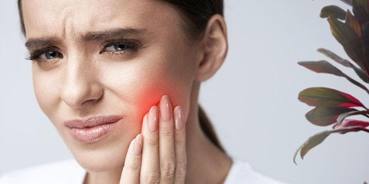 От зубной боли спасет пеларгония