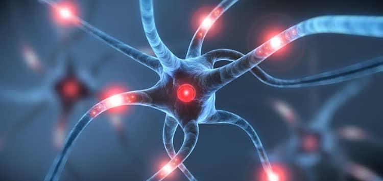 Нут поможет вашей нервной системе