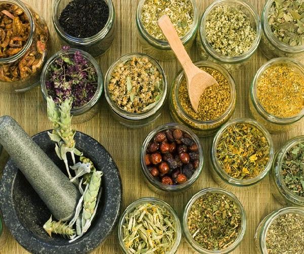 Травы для лечения гастрита у детей