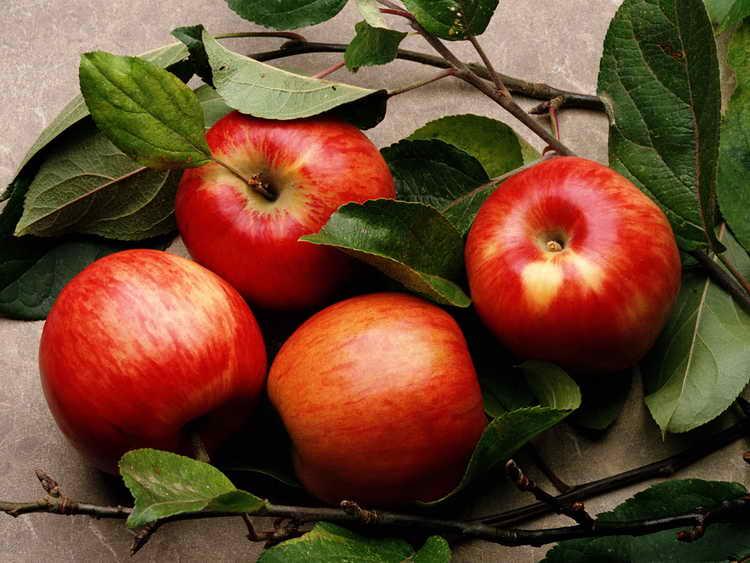 отшелушивающая маска для ног с яблоками