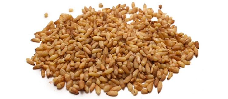 Для лечебных целей заготавливают семена растения.