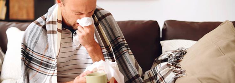 Мята поможет излечить простуду