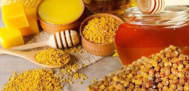 Перга с медом