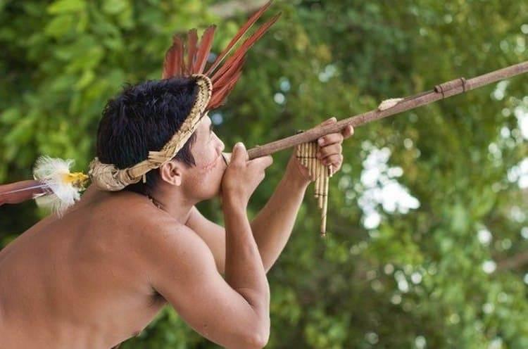 Яд кураре до сих пор используют некоторые племена, охотясь на крупных зверей.