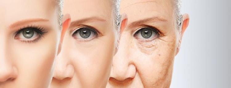 Нут сбережет вашу кожу молодой