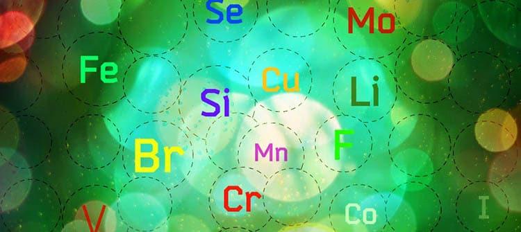 Полезные вещества и микроэлементы в мяте