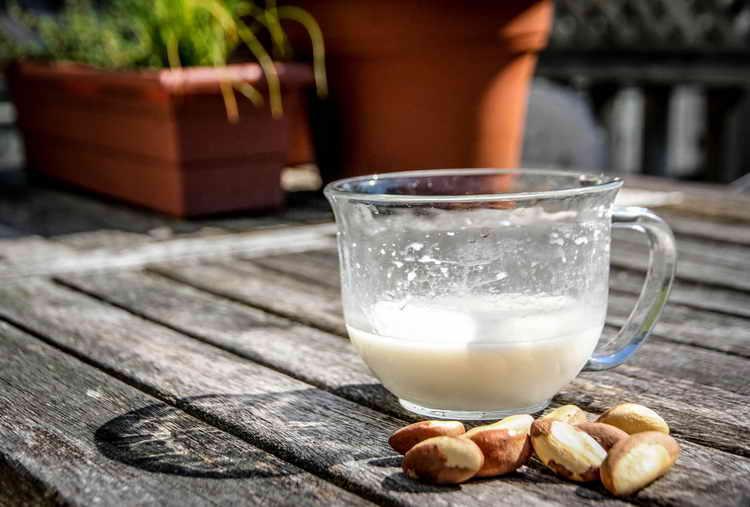 орех бразильский польза и вред для организма