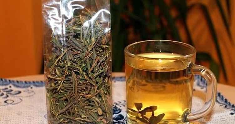 Саган дайля чай из растения и его применение