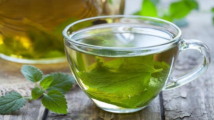 Огромную пользу приносит чай с мелиссой, но при неправильной дозировке можно нанести организму вред.