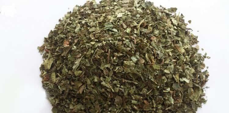Сухие измельченные листья орешника