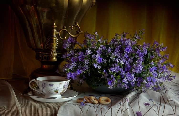 Чай с колокольчиком эффективен при гинекологических заболеваниях.