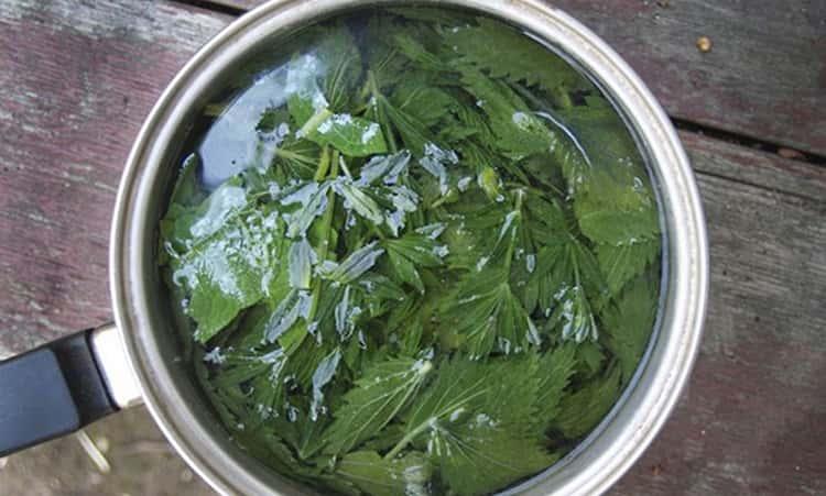 Листья крапивы обладают рядом лечебных свойств для женщин, но есть у растения и противопоказания к применению
