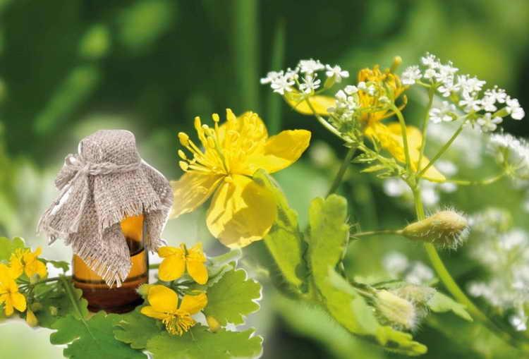 грибок стопы народные средства лечения