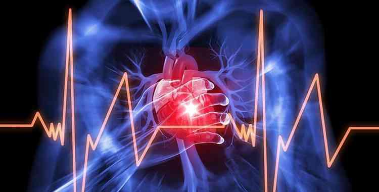 Ситник растение поможет справиться с болезнью сердца