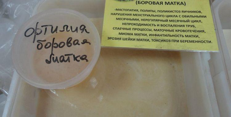 Широкое применение нашел и мед боровой матки благодаря своим целебным свойствам.