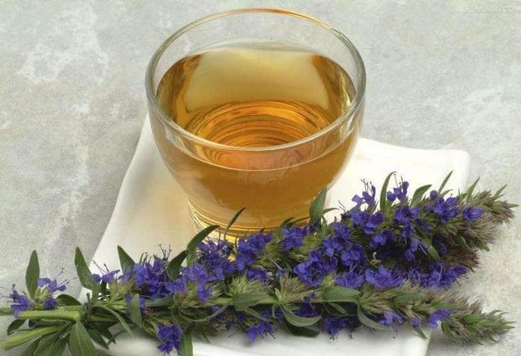 Чай иссопа применяют при лечении почечной колики.
